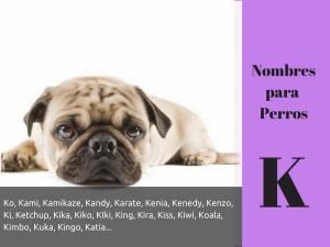 Los nombres para perros con K