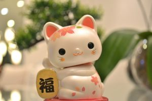 nombres en japones,nombres para gatas, nombres de gatas, nombres para gatitas, nombres de gatas, nombres para gatos hembras,